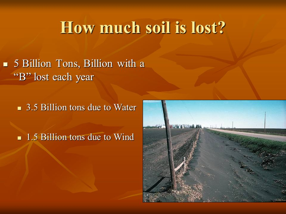 How much soil is lost 5 Billion Tons, Billion with a B lost each year. 3.5 Billion tons due to Water.