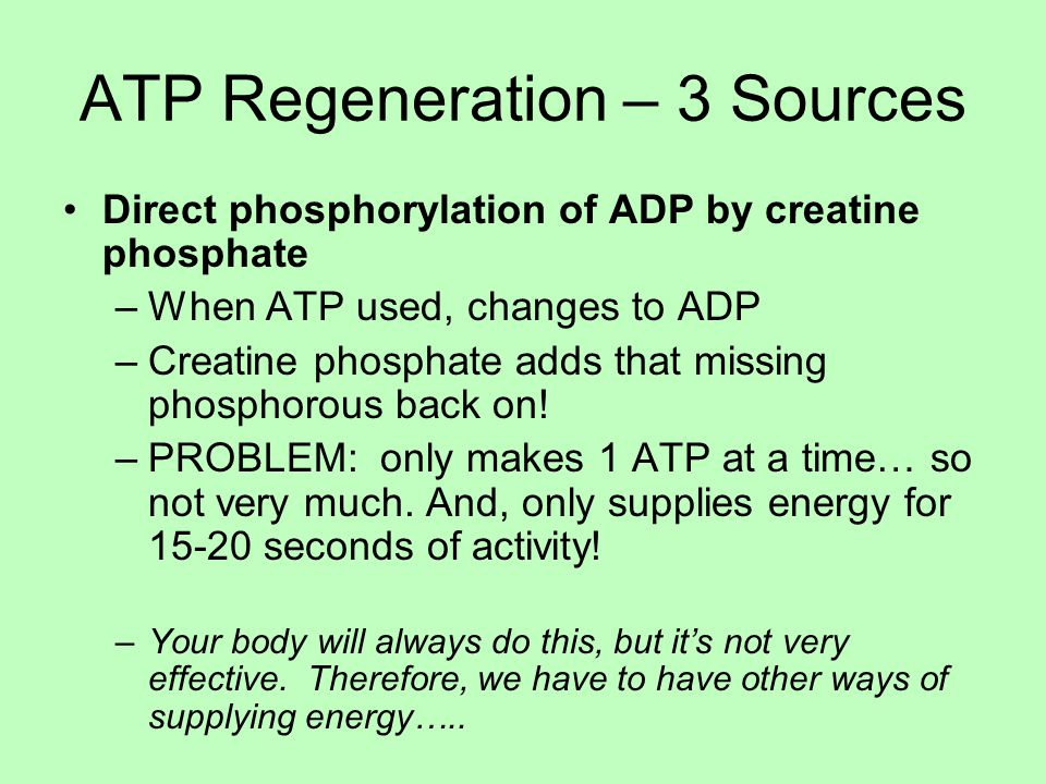 ATP Regeneration – 3 Sources