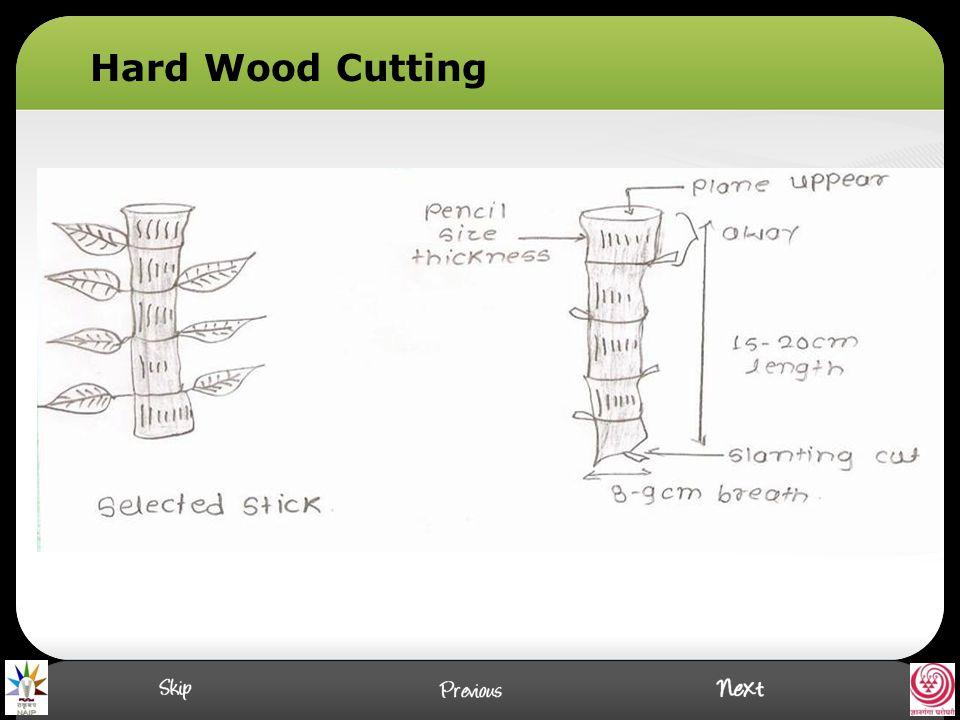 Hard Wood Cutting