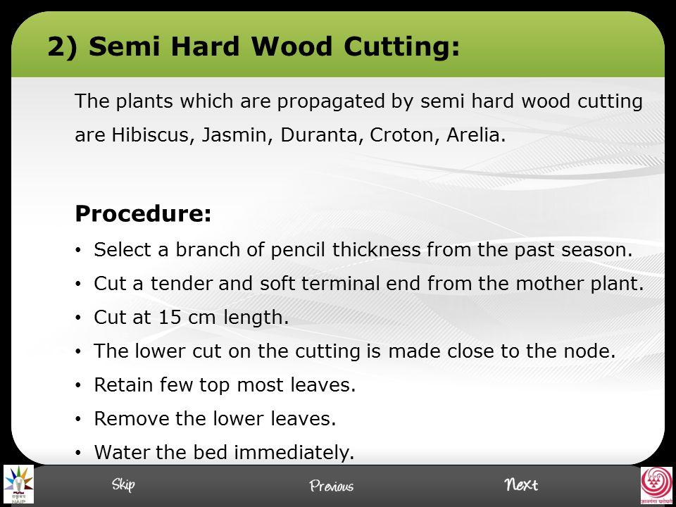2) Semi Hard Wood Cutting: