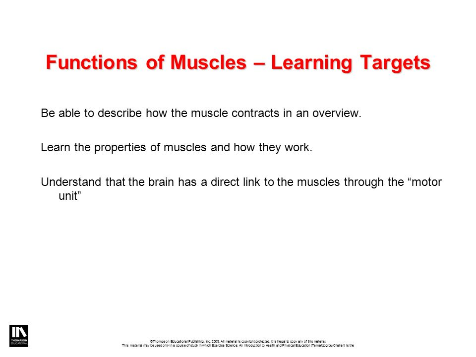 Functions of Muscles – Learning Targets