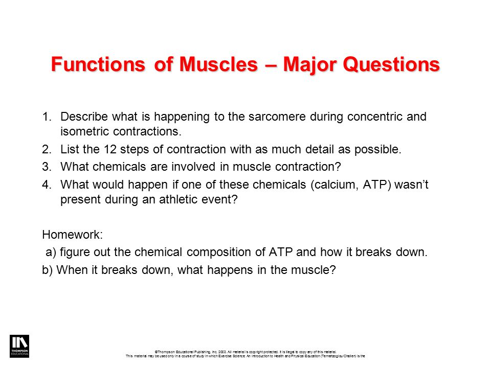 Functions of Muscles – Major Questions