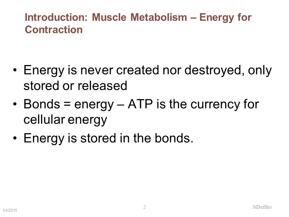 Introduction: Muscle Metabolism – Energy for Contraction