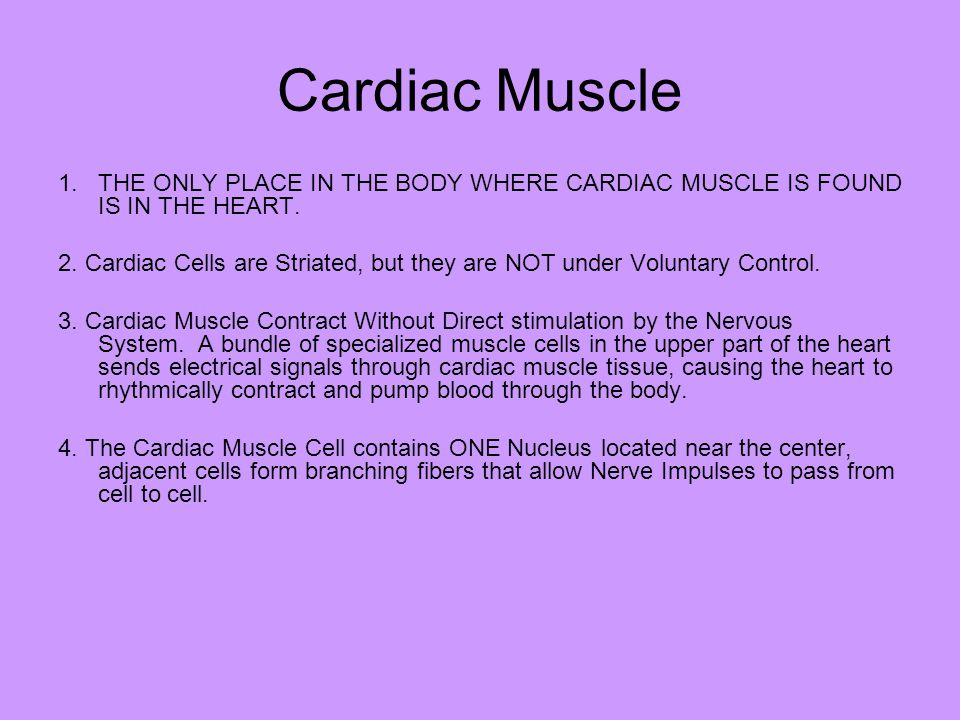 Cardiac Muscle THE ONLY PLACE IN THE BODY WHERE CARDIAC MUSCLE IS FOUND IS IN THE HEART.
