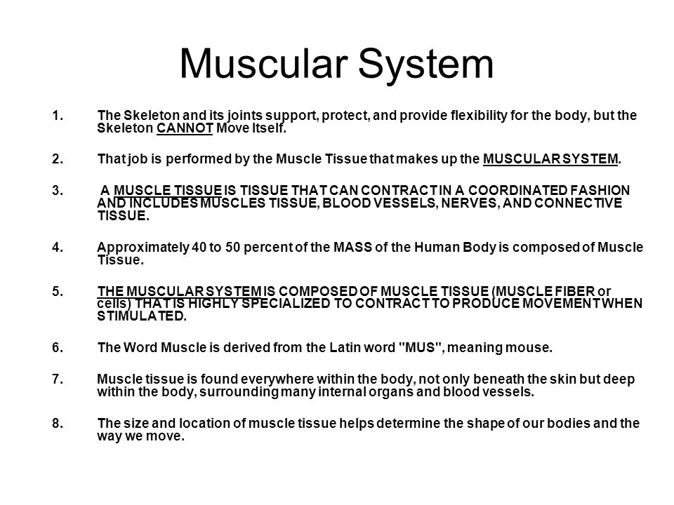 Muscular System The Skeleton and its joints support, protect, and provide flexibility for the body, but the Skeleton CANNOT Move Itself.