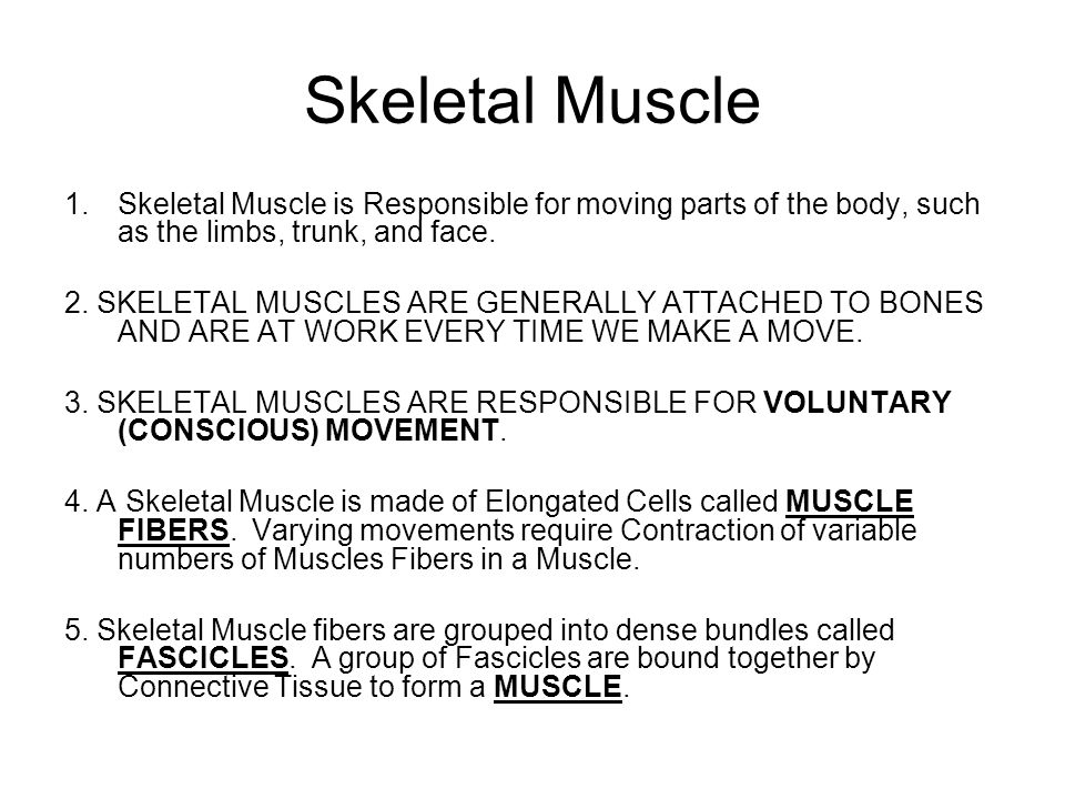 Skeletal Muscle Skeletal Muscle is Responsible for moving parts of the body, such as the limbs, trunk, and face.