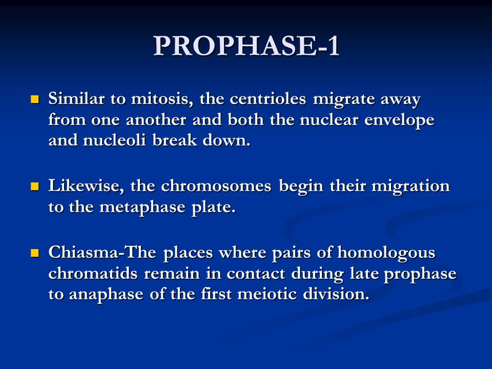 PROPHASE-1 Similar to mitosis, the centrioles migrate away from one another and both the nuclear envelope and nucleoli break down.