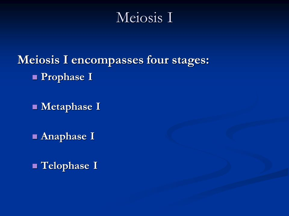 Meiosis I Meiosis I encompasses four stages: Prophase I Metaphase I