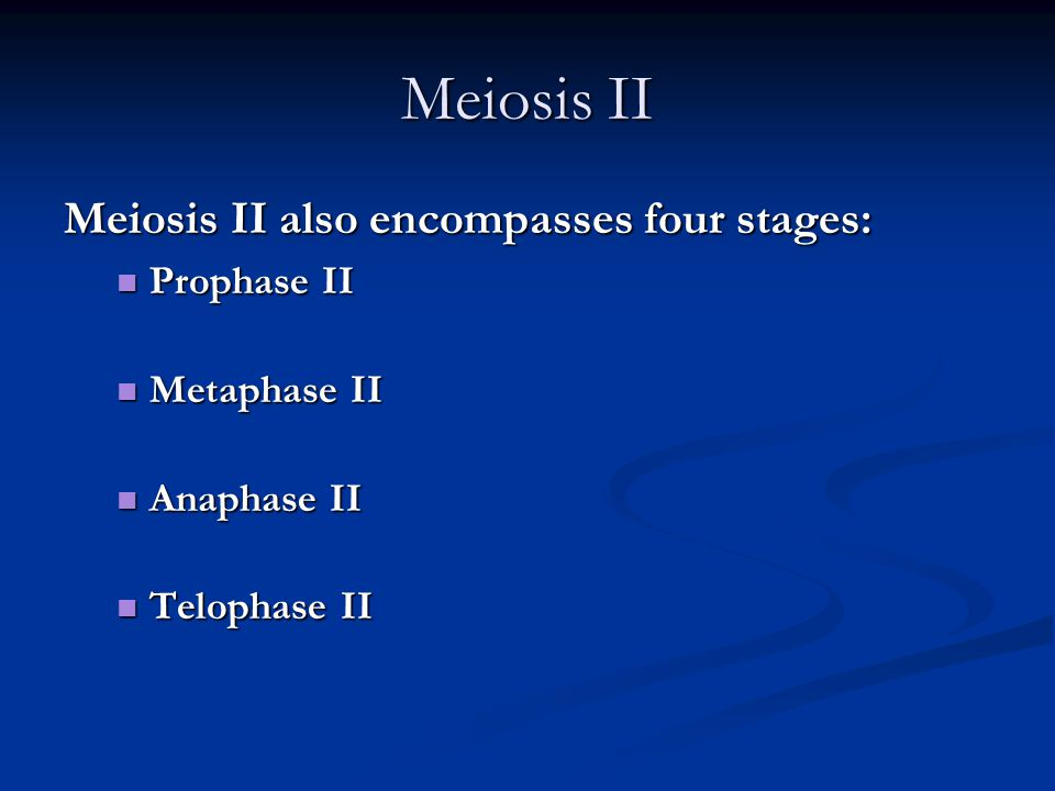 Meiosis II Meiosis II also encompasses four stages: Prophase II