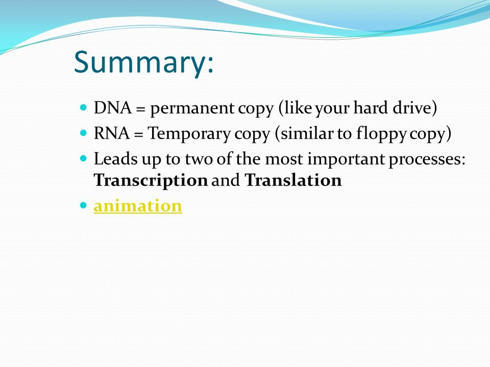 Summary: DNA = permanent copy (like your hard drive)
