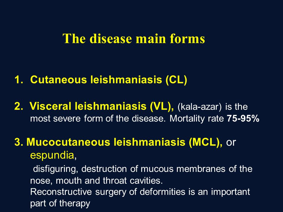 The disease main forms Cutaneous leishmaniasis (CL)