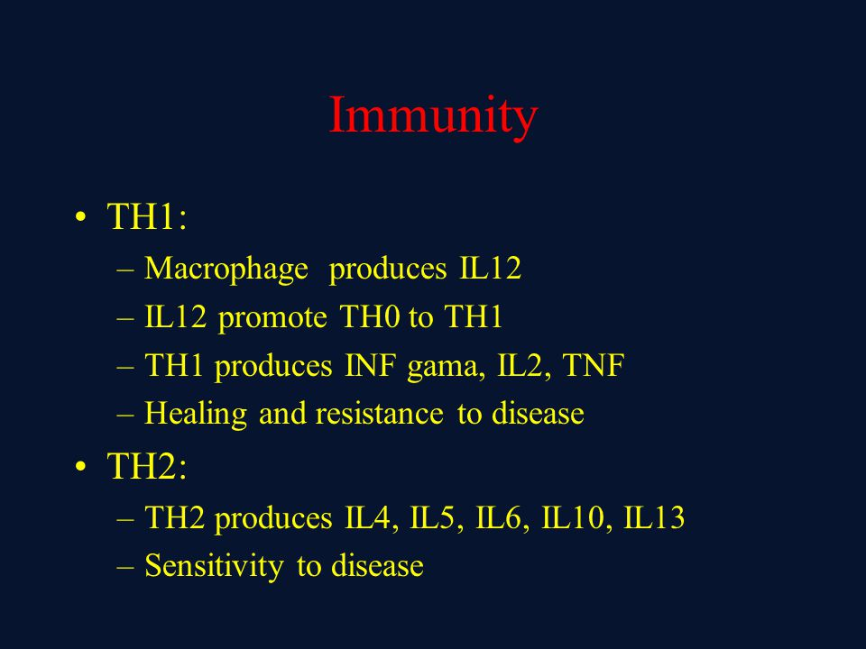 Immunity TH1: TH2: Macrophage produces IL12 IL12 promote TH0 to TH1
