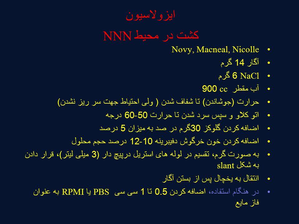 ایزولاسیون کشت در محیط NNN