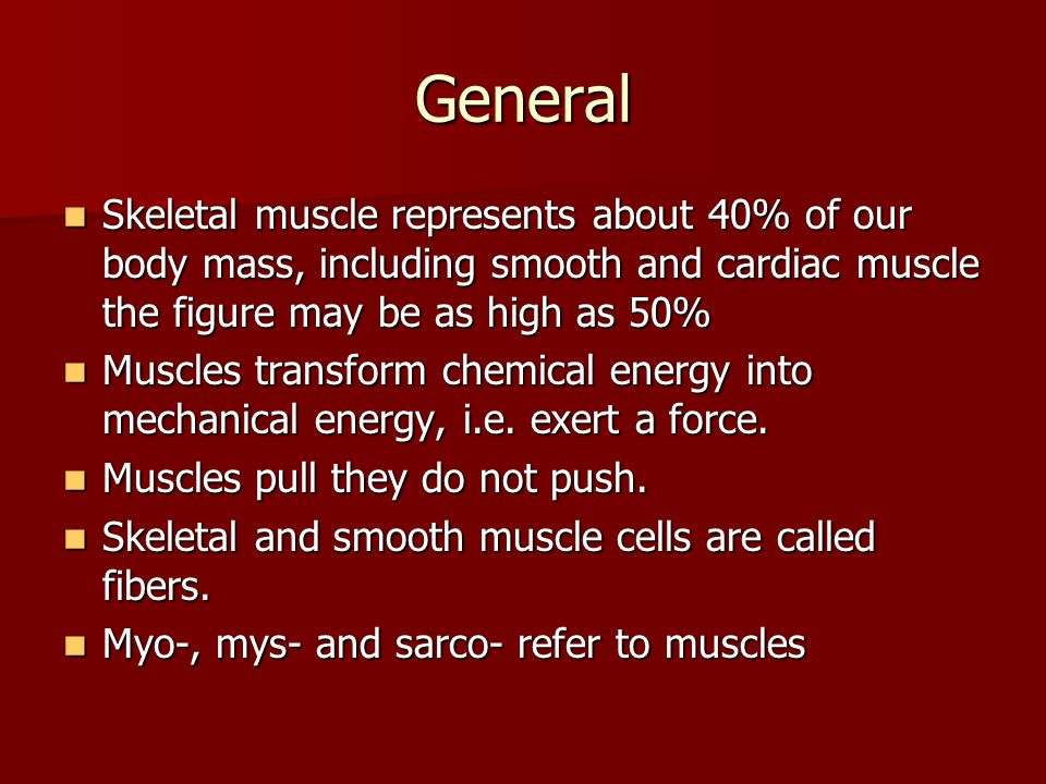 General Skeletal muscle represents about 40% of our body mass, including smooth and cardiac muscle the figure may be as high as 50%