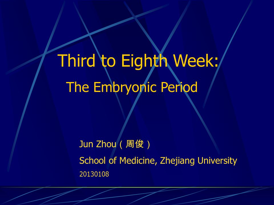 Third to Eighth Week: The Embryonic Period Jun Zhou(周俊)