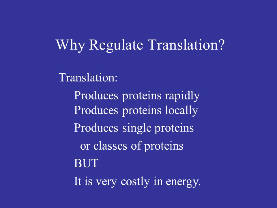 Why Regulate Translation