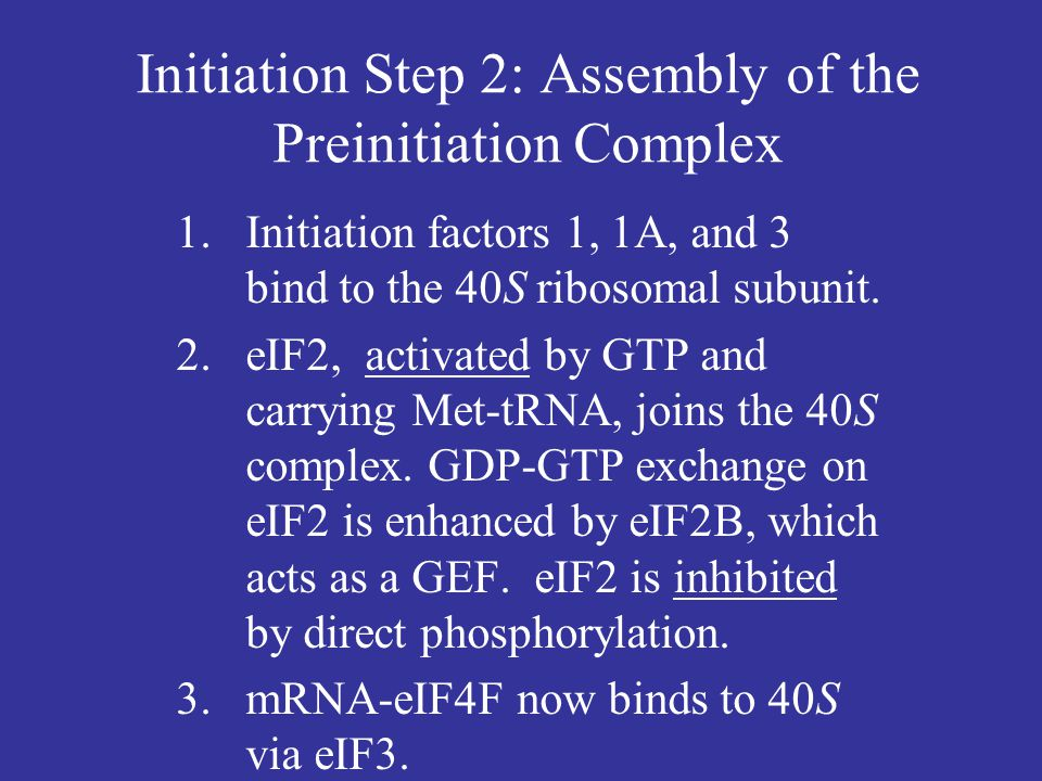 Initiation Step 2: Assembly of the Preinitiation Complex