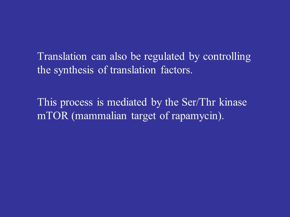 Translation can also be regulated by controlling the synthesis of translation factors.
