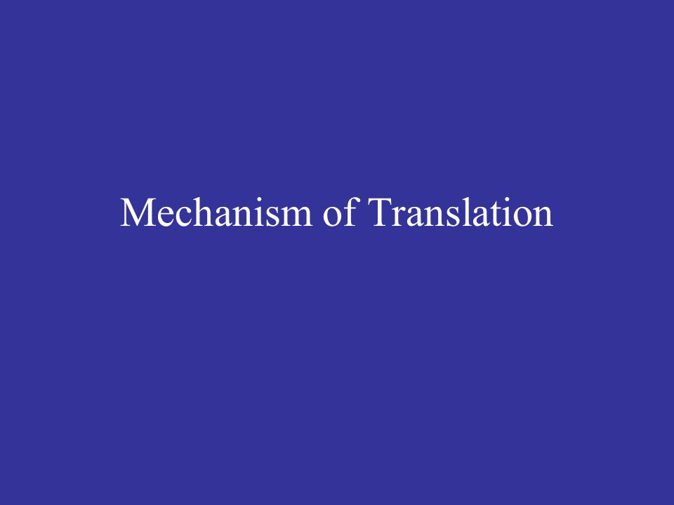 Mechanism of Translation