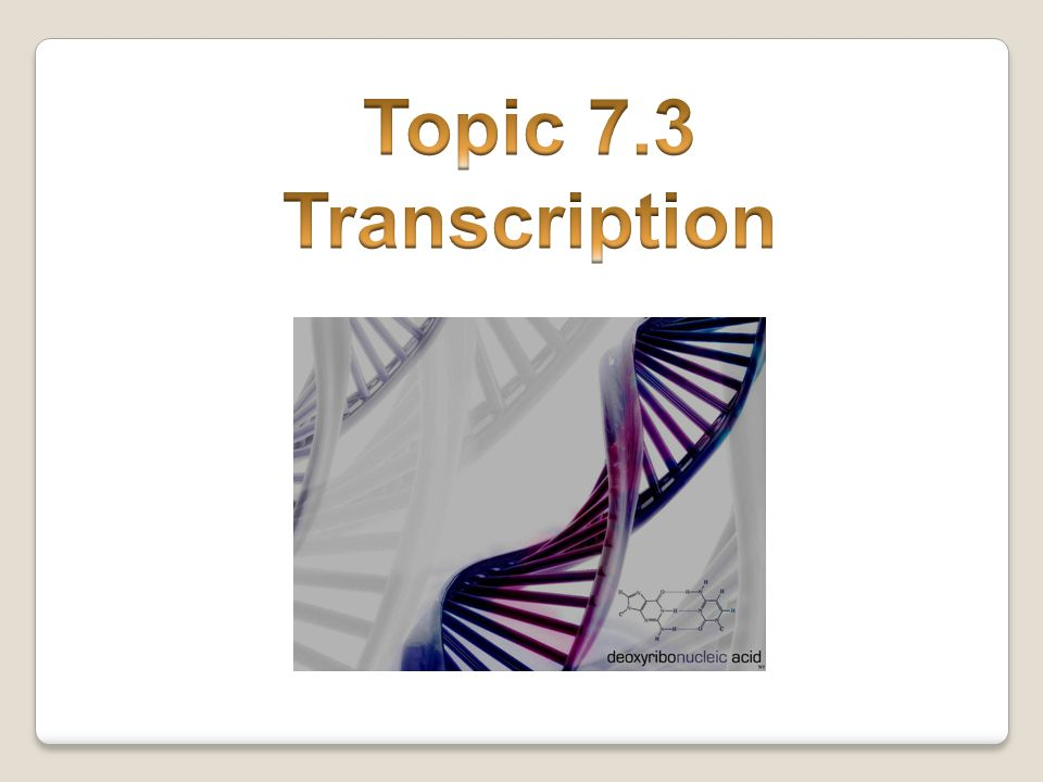 Topic 7.3 Transcription