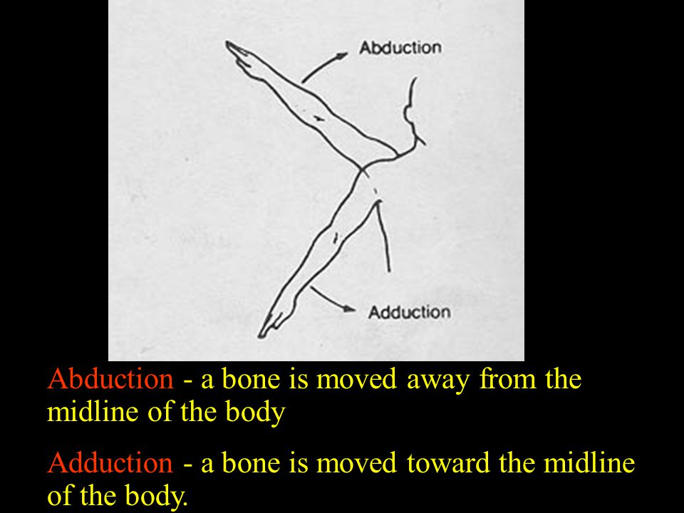 Abduction - a bone is moved away from the midline of the body