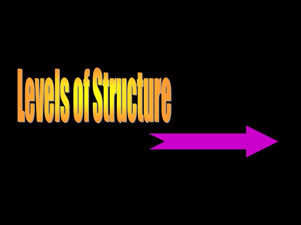 Levels of Structure