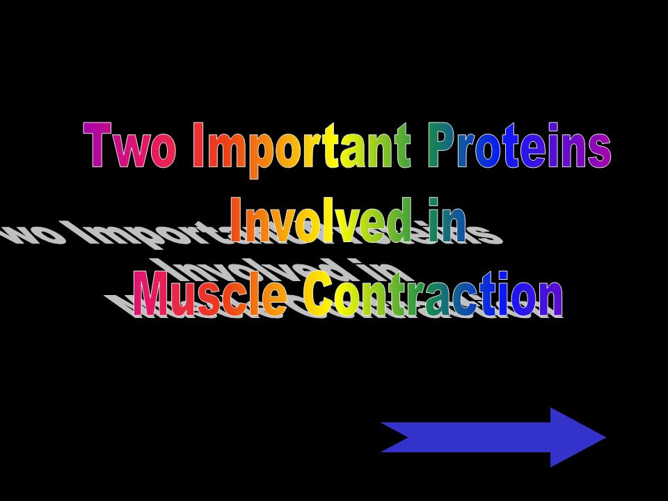 Two Important Proteins