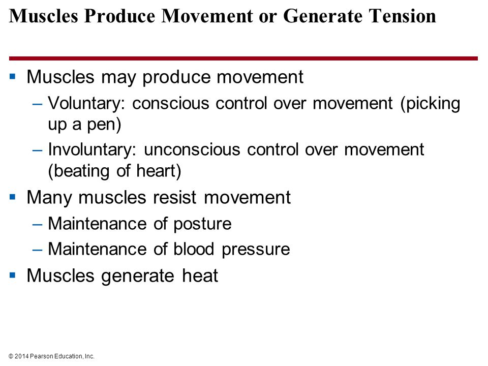 Muscles Produce Movement or Generate Tension