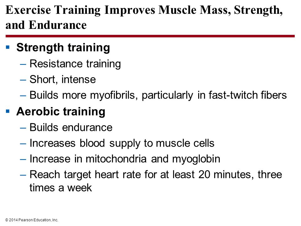 Exercise Training Improves Muscle Mass, Strength, and Endurance