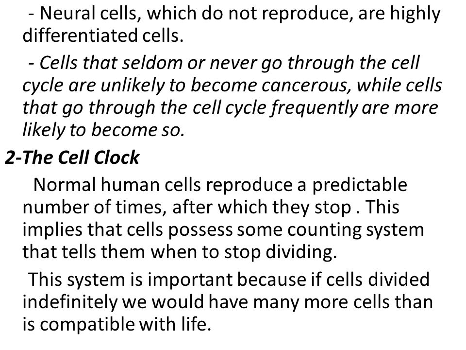 - Neural cells, which do not reproduce, are highly differentiated cells.