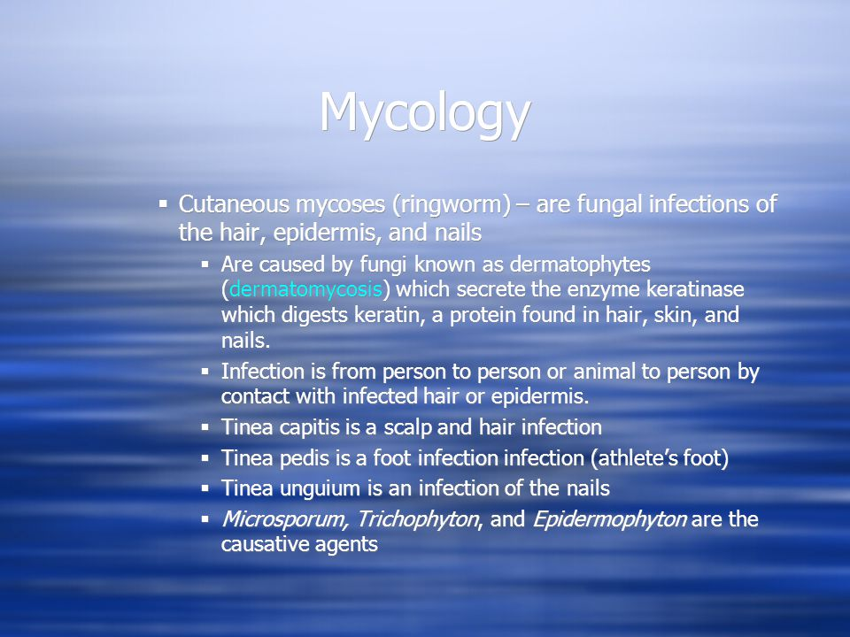 Mycology Cutaneous mycoses (ringworm) – are fungal infections of the hair, epidermis, and nails.