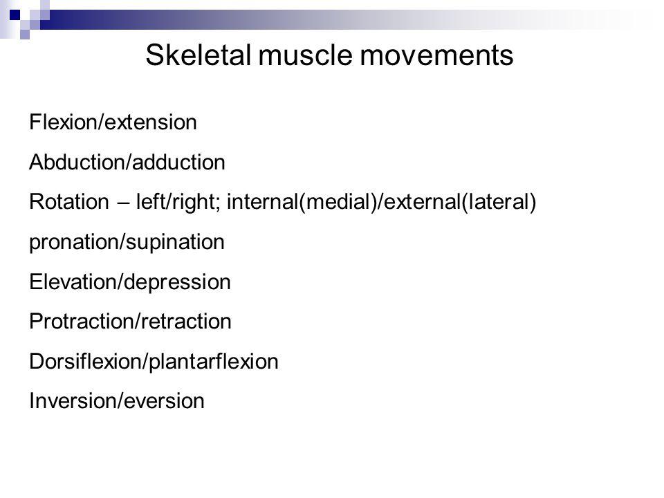 Skeletal muscle movements