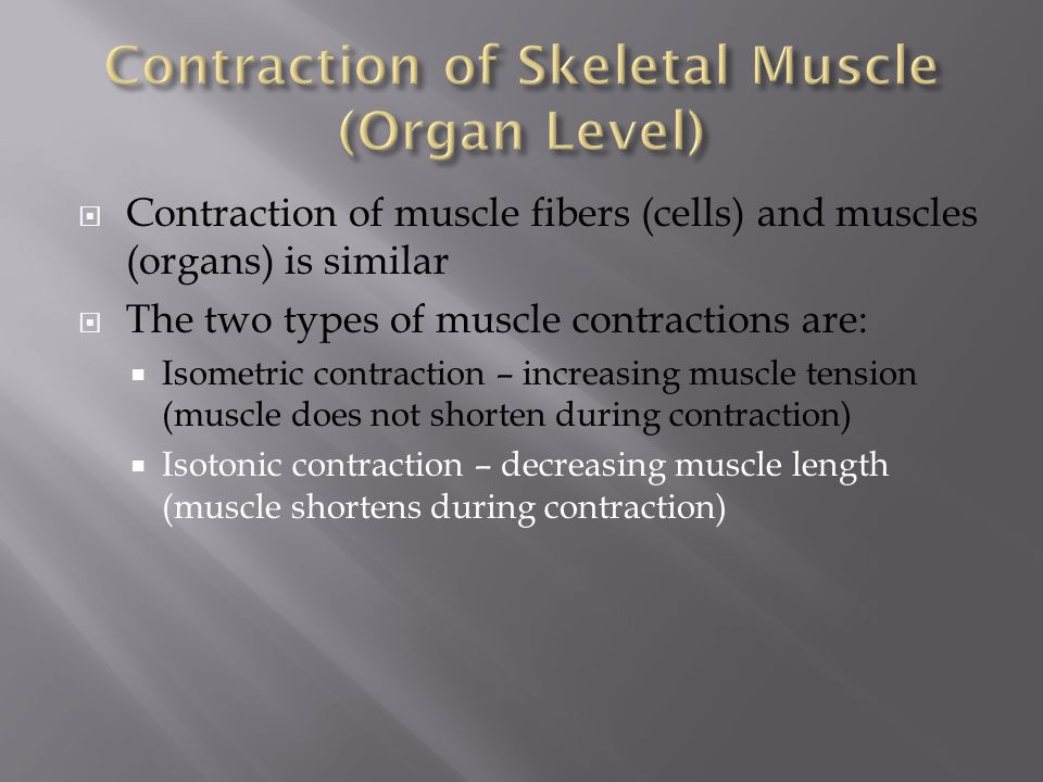 Contraction of Skeletal Muscle (Organ Level)