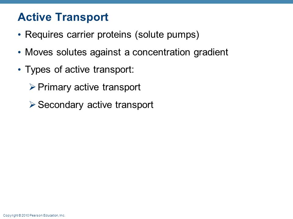 Active Transport Requires carrier proteins (solute pumps)