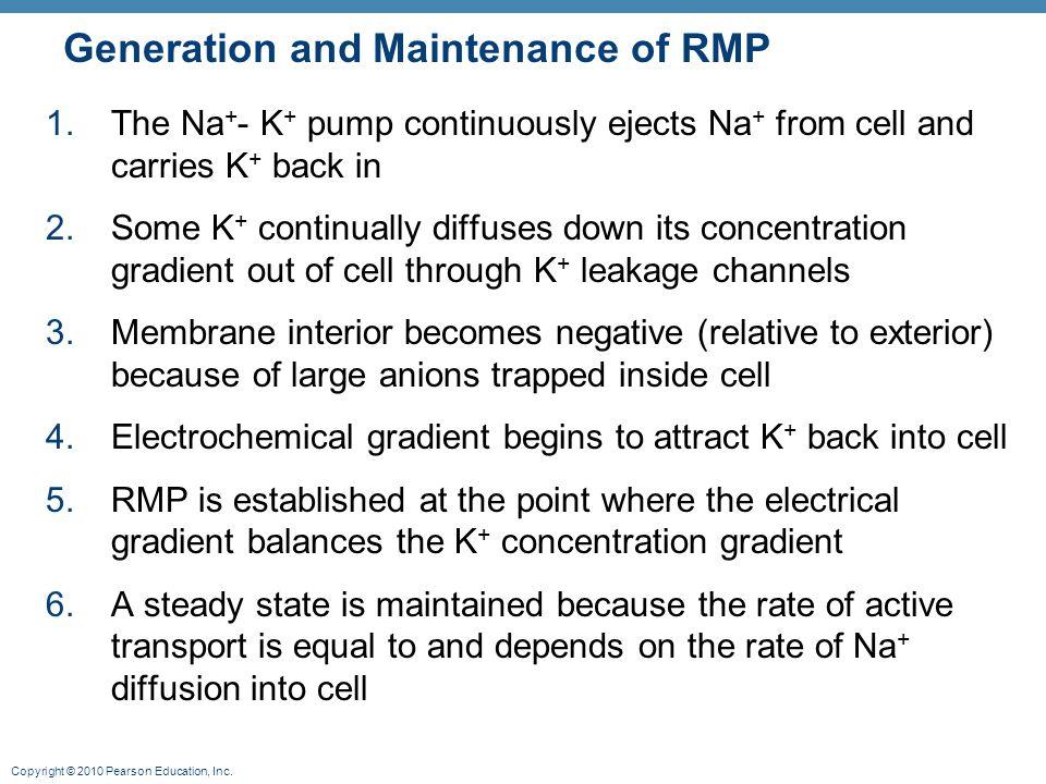Generation and Maintenance of RMP