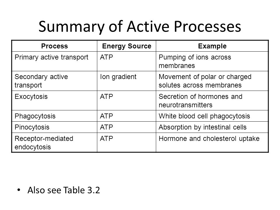 Summary of Active Processes
