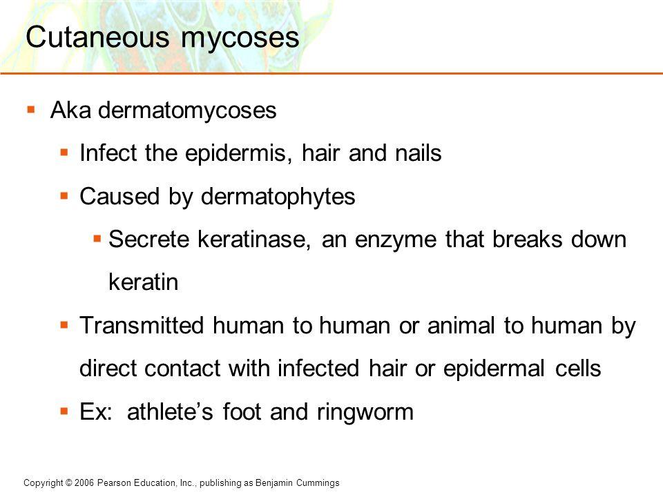 Cutaneous mycoses Aka dermatomycoses