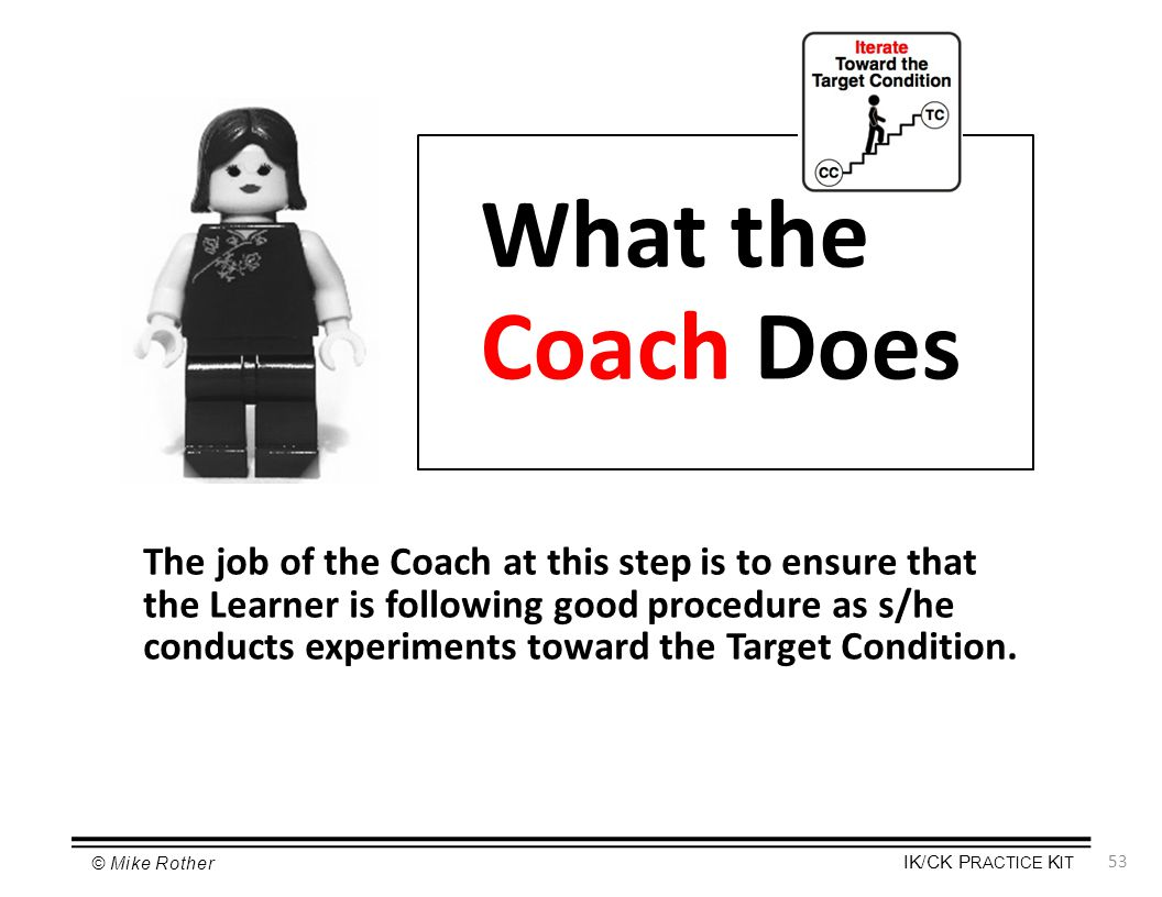 What the Coach Does
