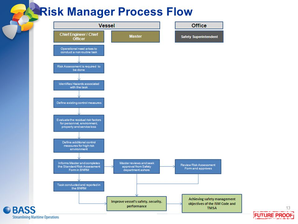 Risk Manager Process Flow