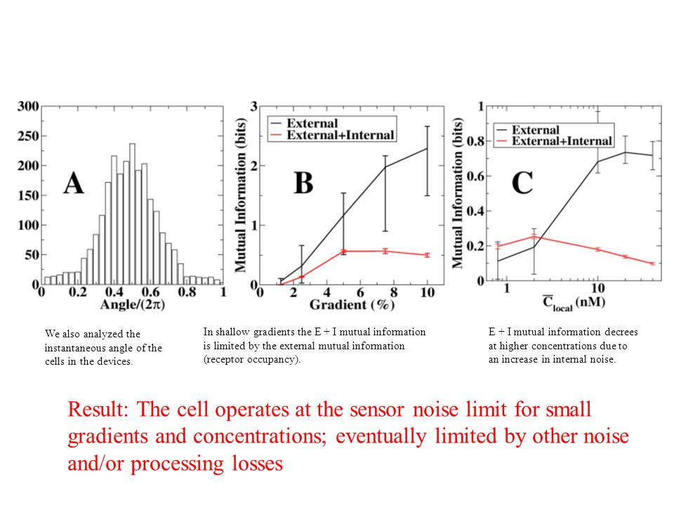 Result: The cell operates at the sensor noise limit for small