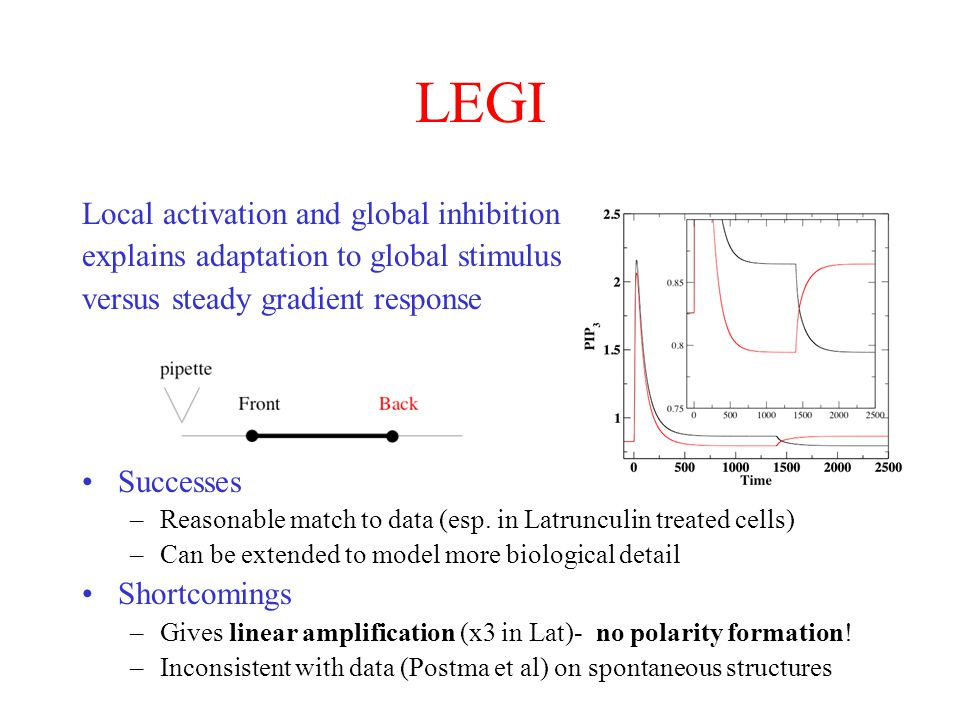 LEGI Local activation and global inhibition