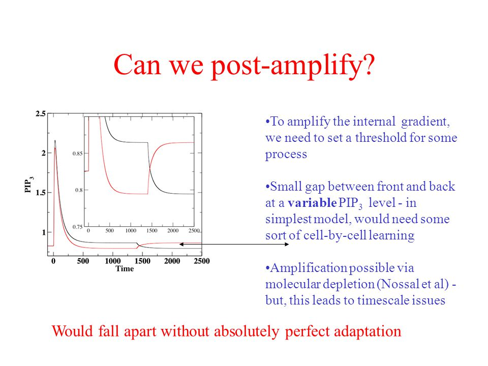 Can we post-amplify To amplify the internal gradient, we need to set a threshold for some process.