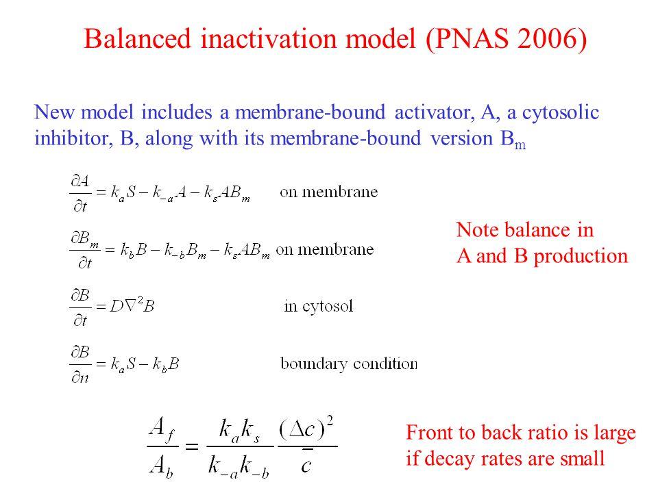 Balanced inactivation model (PNAS 2006)