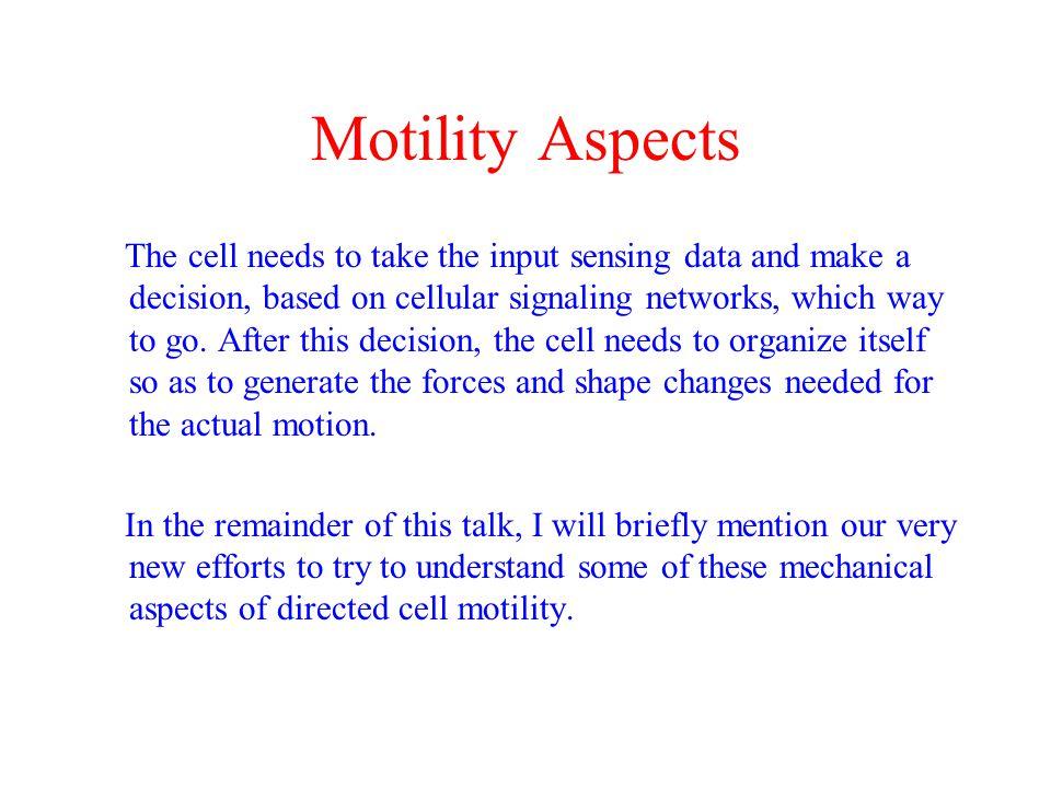 Motility Aspects