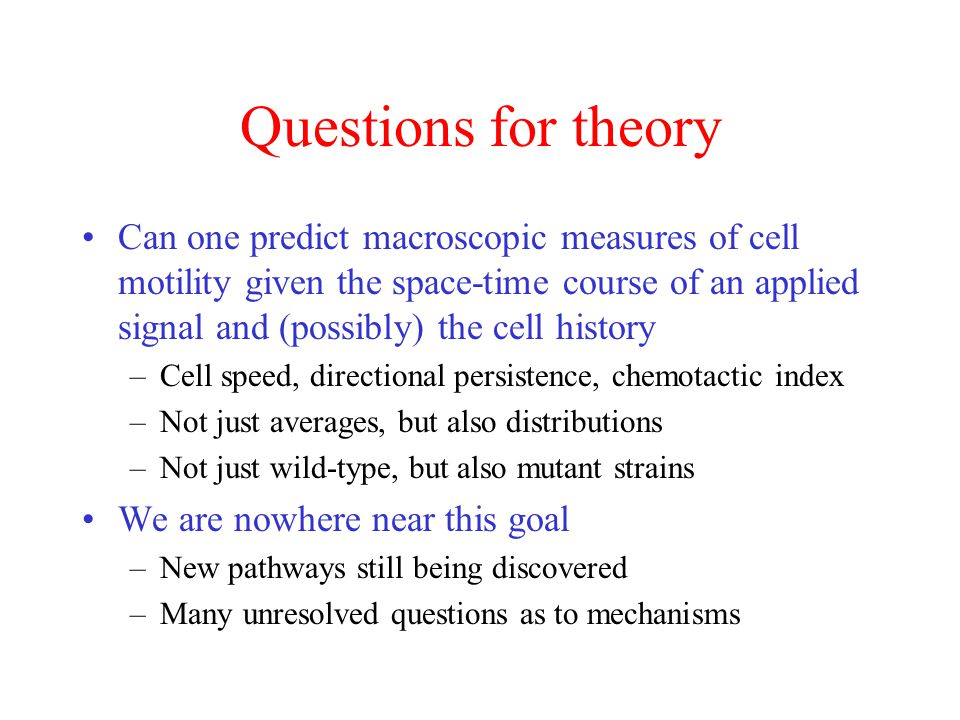 Questions for theory
