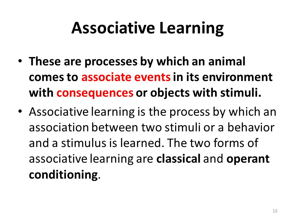 Associative Learning These are processes by which an animal comes to associate events in its environment with consequences or objects with stimuli.
