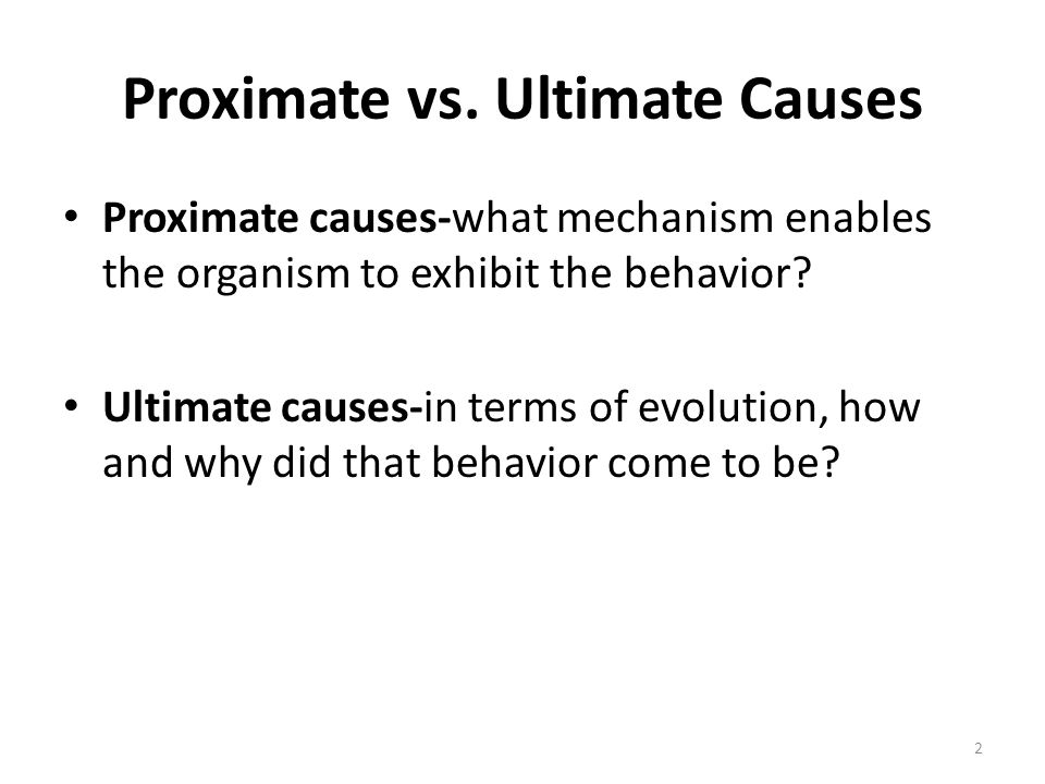 Proximate vs. Ultimate Causes