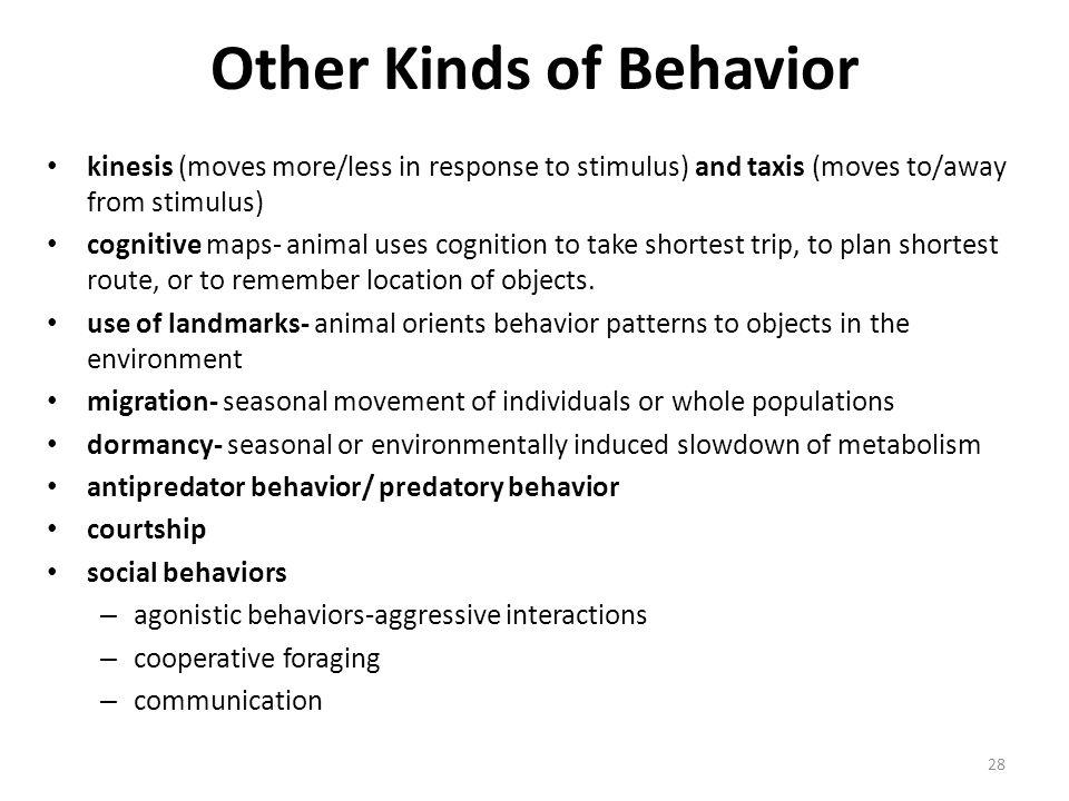 Other Kinds of Behavior
