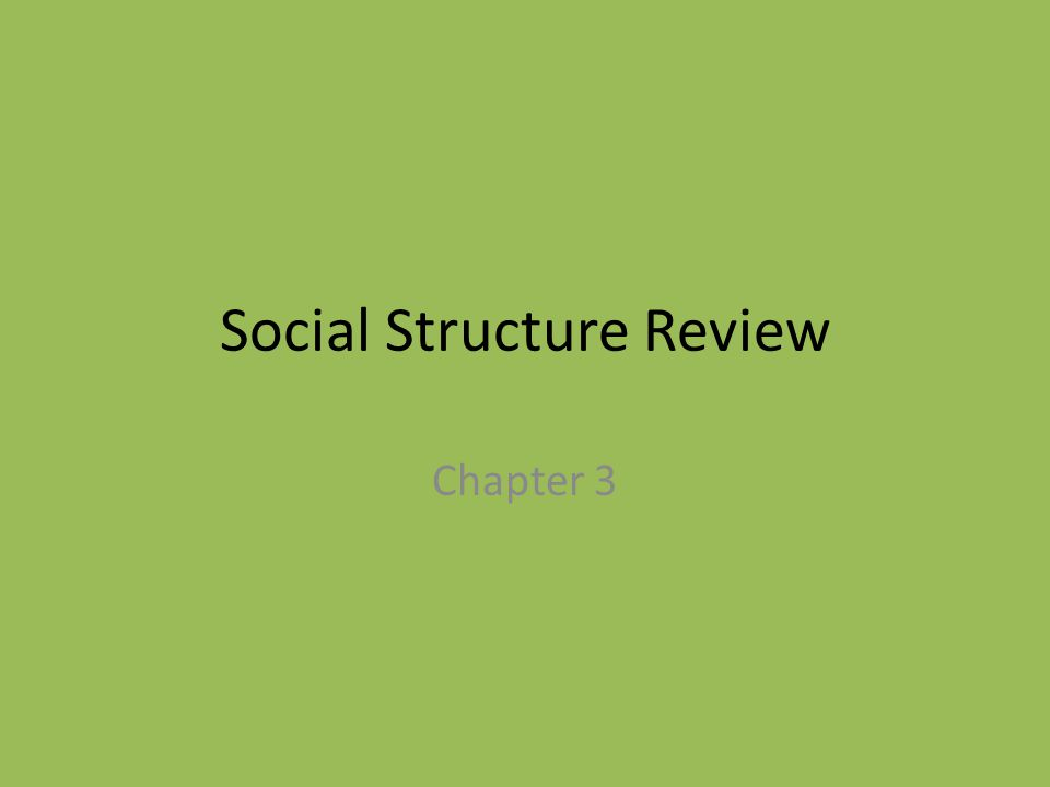 Social Structure Review