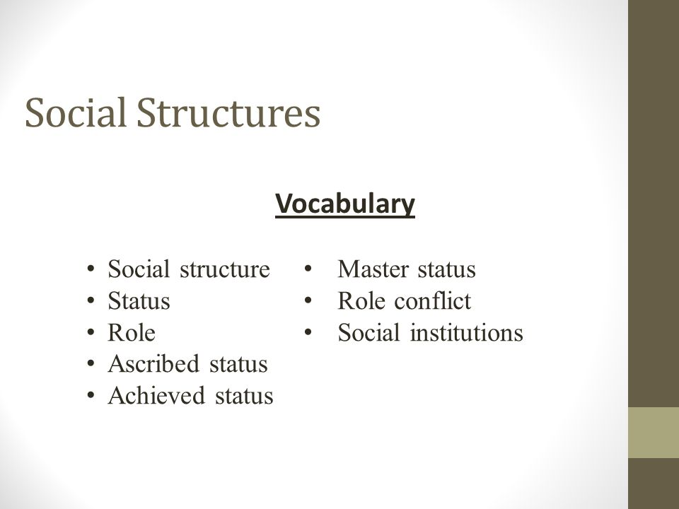 Social Structures Vocabulary Social structure Status Role